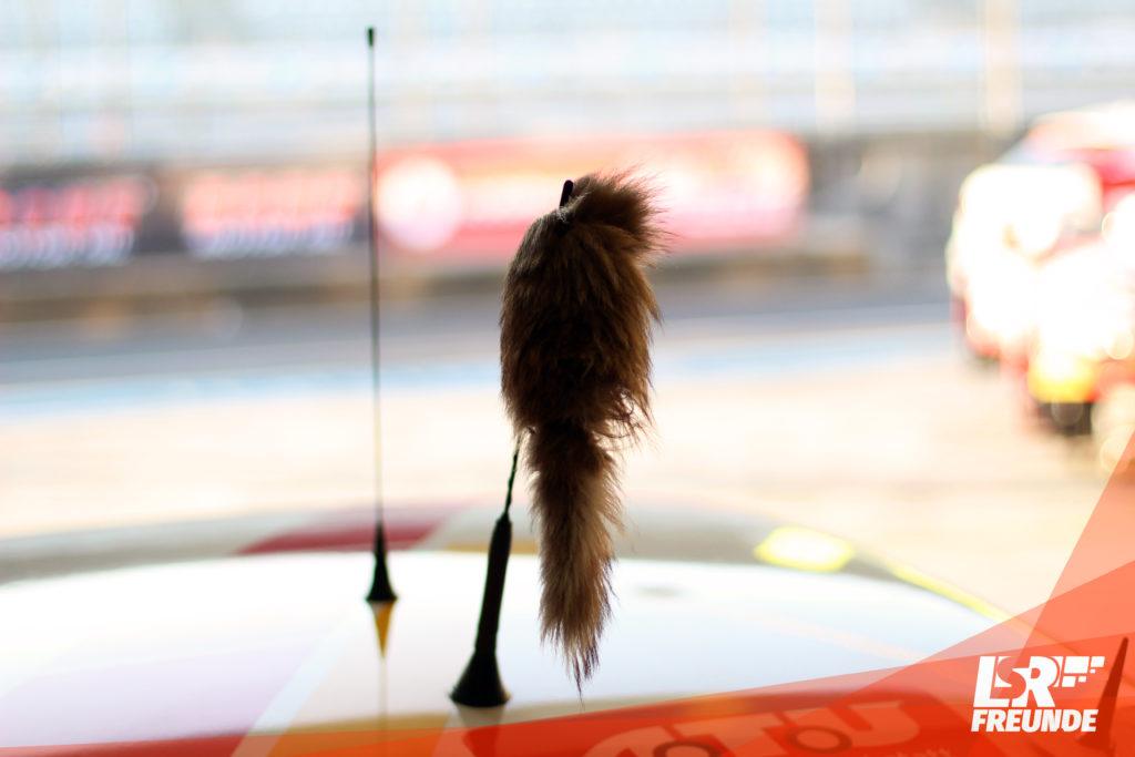 Darf nicht fehlen: Der Fuchschwanz am Manta